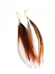 Nut brown, black and iridescent dark green cockerel feathers pierced earrings