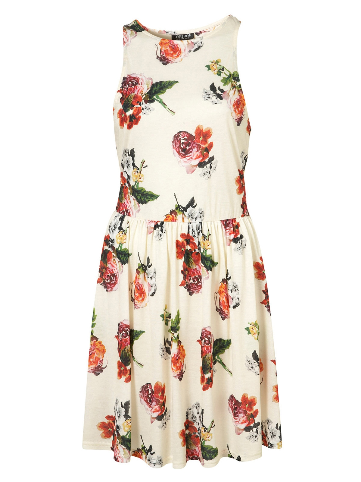Louise Paris Topshop Rosey Posey Ecru Floral Printed Skater Dress
