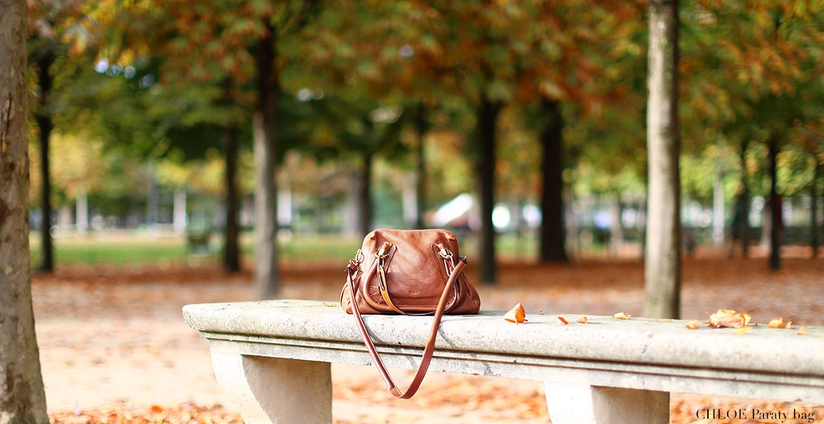 CHLOE Nutmeg brown grained leather Paraty medium leather cross body bag Retail price 1450€ NEW